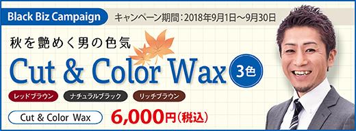 2018.09 秋を艶めくカラーワックス3色